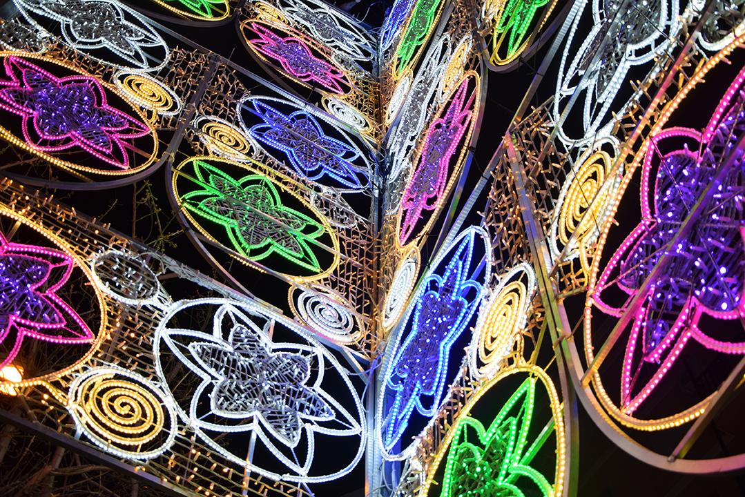 Elecfes Iluminaciones Fiesta 3